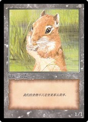 Token - JingHe Age - Squirrel
