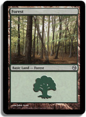 Forest (111)