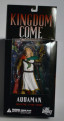 Aquaman, Kingdom Come Collector Action Figure, DC Direct