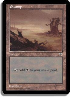 Swamp (Fallen tree, stump in background)