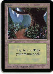 Forest (Brown Dirt Road) on Channel Fireball