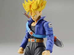DBZ-Trunks Absolute Perfection Figure