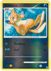 Buizel - 61/106 - Common - Reverse Holo