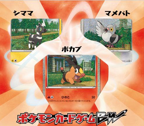 Japanese Pokemon Black & White Collection Sheet - Tepig