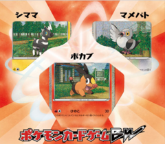 Japanese Pokemon Black & White Collection Sheet - Tepig