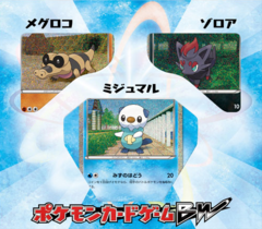 Japanese Pokemon BW Collection Sheet - Oshawott