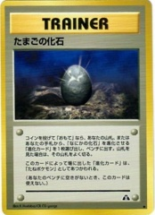 Fossil Egg - Uncommon