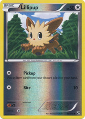 Lillipup - 80/114 - Common - Reverse Holo