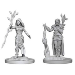 D&D Nolzur's Marvelous Miniatures - Female Human Druid (wave 2)