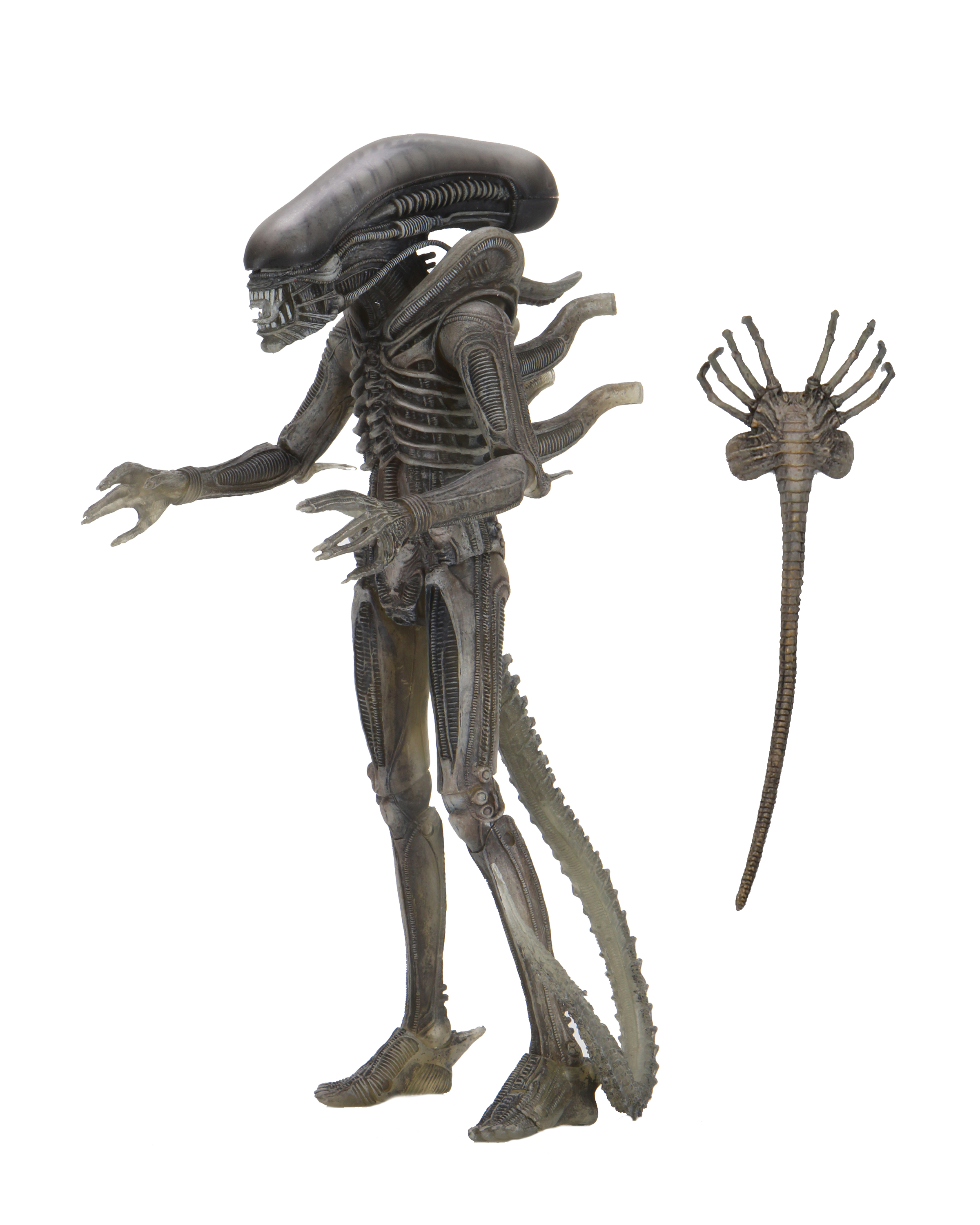 Alien 40th Annivesary - Alien 7inch Action Figure