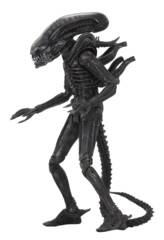 Alien - Big Chap Ultimate Edition 7in Action Figure (Neca)