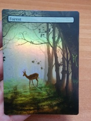 FOREST #01 FOIL BORDERLESS
