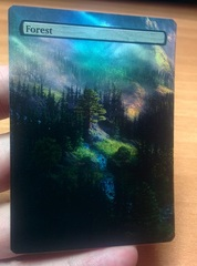 FOREST #14 FOIL BORDERLESS