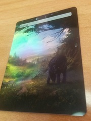FOREST #18 FOIL BORDERLESS
