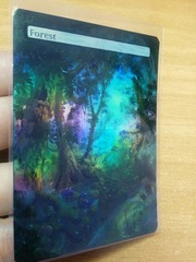 FOREST #19 FOIL BORDERLESS