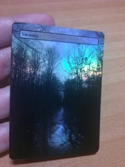 SWAMP #03 FOIL BORDERLESS
