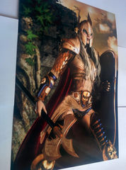 Art Print **Knight Ally** 13x19 Inches MTG