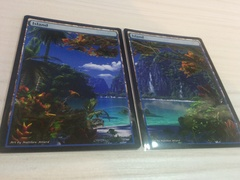 2x Islands #24 Non-Foil Panorama
