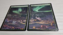 2x Forests #2 Non-Foil Panorama