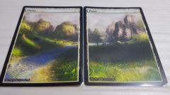2x Plains #5 Non-Foil Panorama