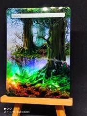 FOREST #13 FOIL BORDERLESS