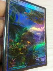 Island #24.1 Foil Extended