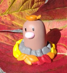 Diglett Falling Leaves