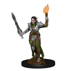 WZK 72599 - Elf Female Fighter
