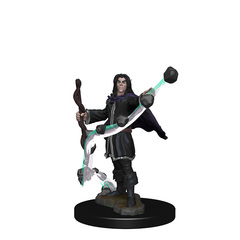 WZK 72605 - Elf Male Sorcerer