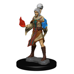 WZK 72606 - Elf Female Sorcerer