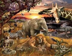 400 Wild Savanna