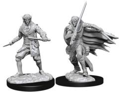 WZK 73854 -Male Elf Rogue (2)
