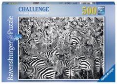 14807 Zebra Challenge