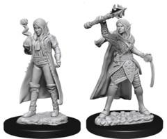 WZK 73835 - Female Elf Cleric (2)