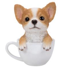 11750 Chihuahua