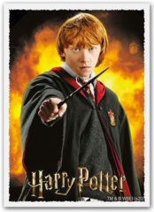 Dragon Shield -  100 Matte Art Sleeves - Ron Weasley