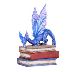 Book Dragon 12627