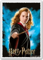 Dragon Shield -  100 Matte Art Sleeves - Hermione Granger