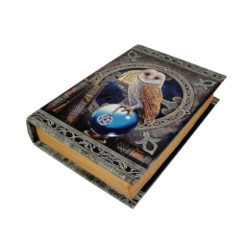 10385 Spell Keeper Book Box