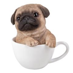 11749 Pug Teacup Pups