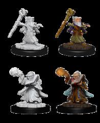 WZK 73382 - Gnome Wizard
