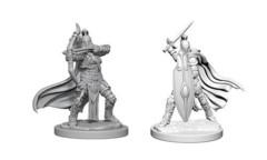 WZK 73425 - Female Knights/Gray Maidens (2)