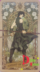 Fate/Grand Order Tarot Card - Knight of Lancer: Diarmuid Ua Duibhne