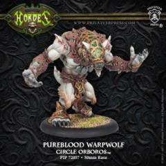 Pureblood Warpwolf // Warpwolf Stalker // Feral Warpwolf