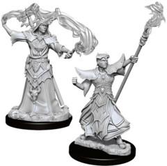 Pathfinder Battles Deep Cuts Unpainted Miniatures: Male Human Sorcerer (2)
