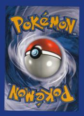 Bulk Pokemon Holo Basic Energy
