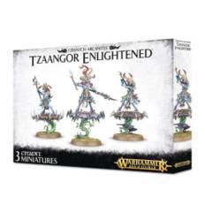 Tzeentch Arcanites Tzaangor Enlightened
