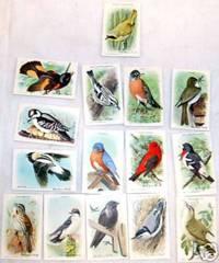 USEFUL BIRDS OF AMERICA 9th Ed © 1938 Arm & Hammer J9-5