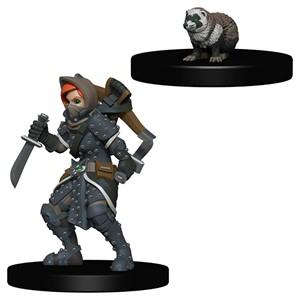 Wardlings: Girl Rogue and Badger