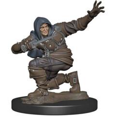 Pathfinder Battles Premium Painted Figure: Male Human Rogue